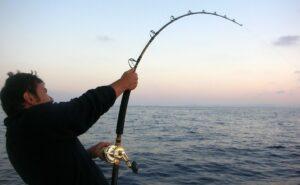 Gara di pesca a traina @ Darsena LNI Porto Turistico San Benedetto